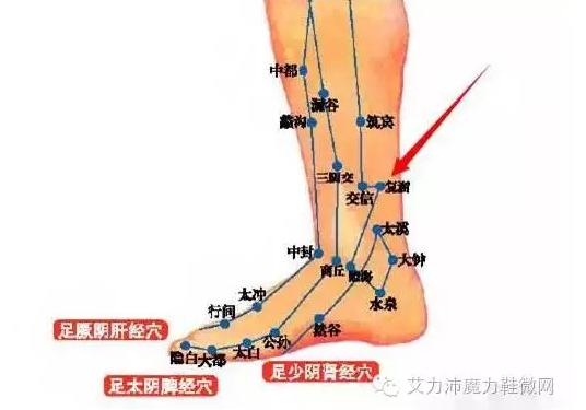 波波人体阴展艺术_人体三条阴经交汇在脚部