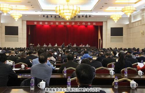 绿之韵胡国安出席湖南省委非公有制经济工作会议