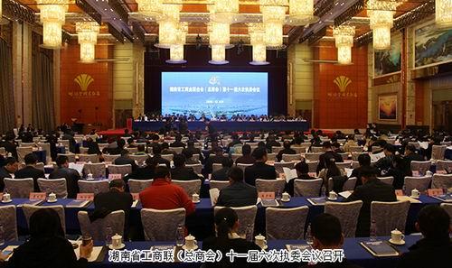绿之韵胡国安出席湖南省工商联十一届六次执委会议
