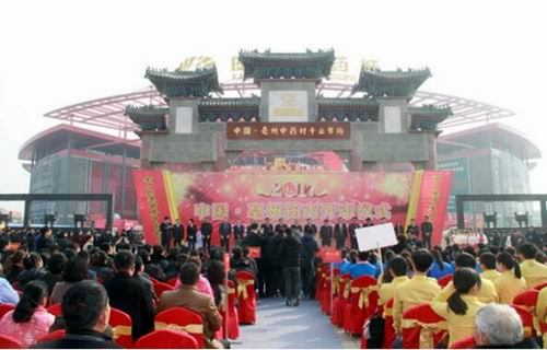 2017年亳州药市开市仪式在康美中药城举行