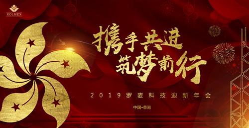 携手共进2019罗麦科技迎新年会盛大举办